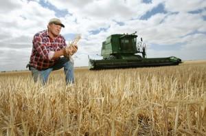 Сельхозпроизводитель