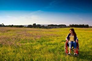 Инструкция по оформлению земли инвалидами